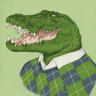 Agile Croc