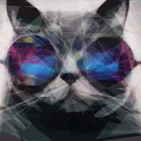 Marvelous Cats