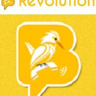 Birds Revolution