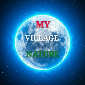 my village nature