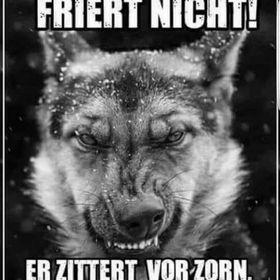 Thore Speier