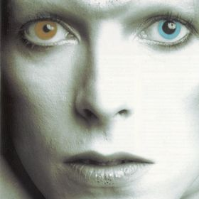 David Bowie World.nl