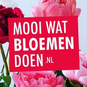 Mooiwatbloemendoen.nl