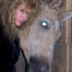 Majik Horse