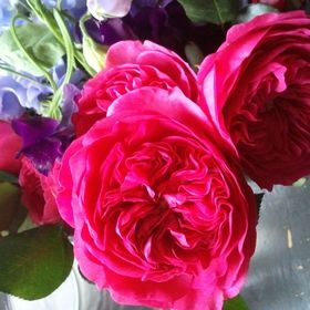 Tricia M. Florals