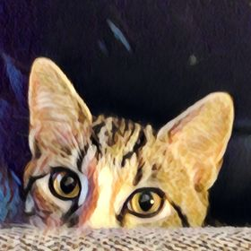 Cat Satterwhite