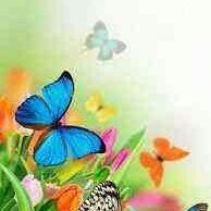 Esra Sarıçiçek