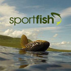 Sportfish Fly Fishing