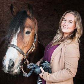 Sophie Callahan Photography - Equine Portrait Photographer & Country Lifestyle Blogger