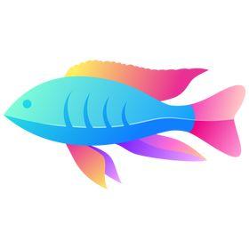 Cichlid Species