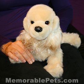 Memorable Pets