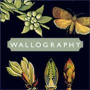 Wallography UK