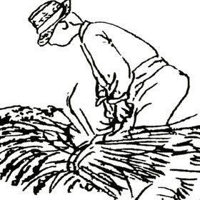 Arroz bomba y cítricos PegoNatura