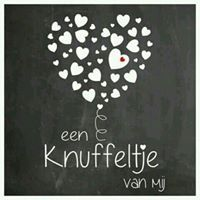 Karin van Gent-Knops