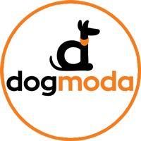 DOG MODA