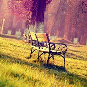 Park Bench Group Counseling Parkbenchgroup On Pinterest