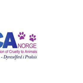SPCA Norway