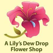 A Lily's Dew Drop