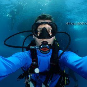 Anthony Leydet || Plongée Bio || Underwater photography
