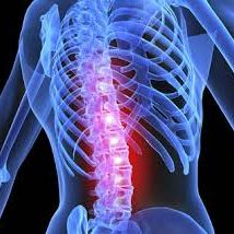 Spine Surgery India