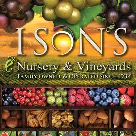 Ison's Nursery & Vineyard