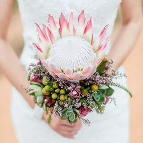 Camilla Weddings&Events