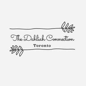 The Dahliah Connection