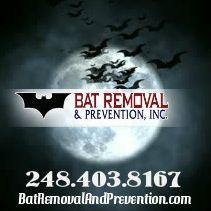 Bat Removal & Prevention, Inc.