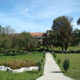rock club land domain borsa maramures transilvania romania ion dragos sireteanu