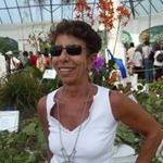 Vera Lúcia Vinhas de Castro