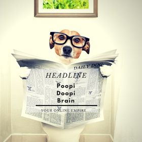 PoopiDoopi Brain