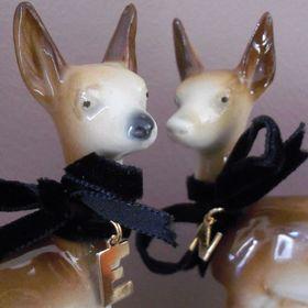 Fawn&Deer