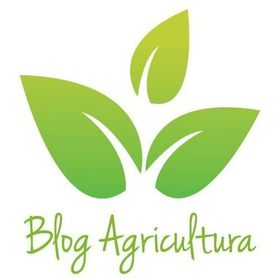 Blog Agricultura