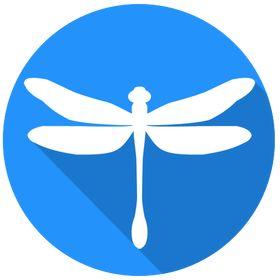 Neondragonfly Web Design