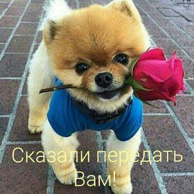 раиса селегененко