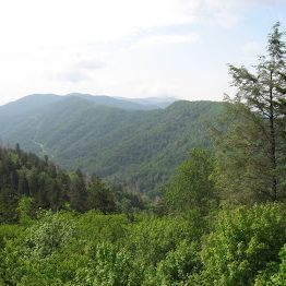 Foothills of the Great Smoky Mountains