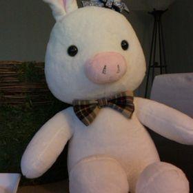 Królicza świnka Juleczkusia Na Pintereście