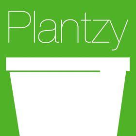 Plantzy
