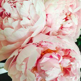 Simply Stems Boutique Florist