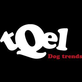 tQel dog trends