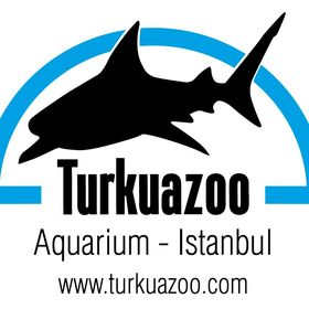 Turkuazoo Akvaryum