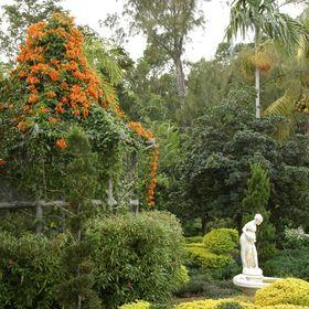 Knoll Landscape Design Miami