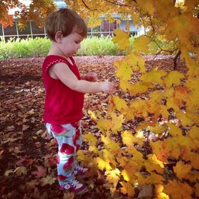 Growing Little Leaves Genealogy and History for Kids