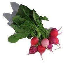 Bali Organic