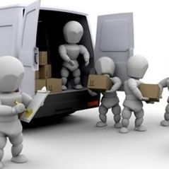 Domestic Packer and Mover