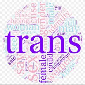 Transgender Inspirations