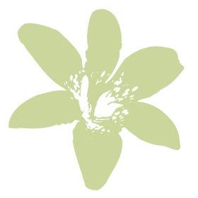 Sweet Lily Natural Nail Spa