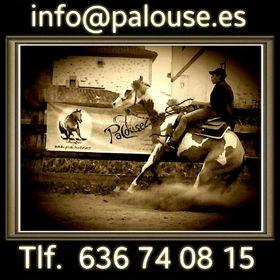 PALOUSE NATURALEZA Y CABALLOS