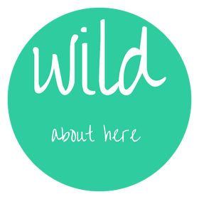 Kriss  - Wild About Here