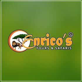 Enrico's Safaris